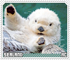 Sealand-animalia