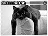 Skellington-seeking