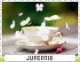 Jupernia-spree