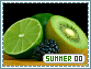 Summer-elements0