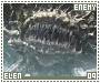 Elen-phoenixdown9