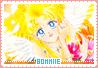 Bommiie-snow