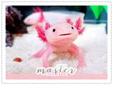 Shizen-master01