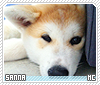Sanna-animalia
