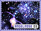Angelrose-elements3