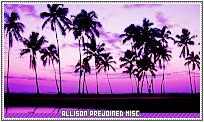 Allison1-misc b