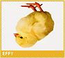 Effy-novella