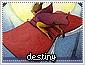 Destiny-choices