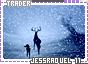 Jessraquel-somagical11