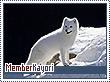 Kayori-natura
