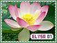 Elysa-elements1