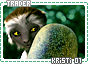 Kristi-somagical1