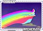 Archer-somagical5
