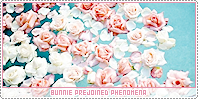 Bunnie-phenomena b