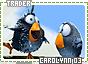 Carolynn-somagical3