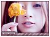 Arianna1-musicstation