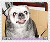 Uyuki-animalia