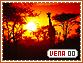 Vena-elements0