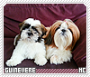 Guinevere-animalia