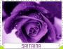 Saitaina-spree