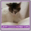 Jenny-intrinsic