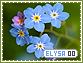 Elysa-elements0