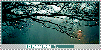 Sheva-phenomena b