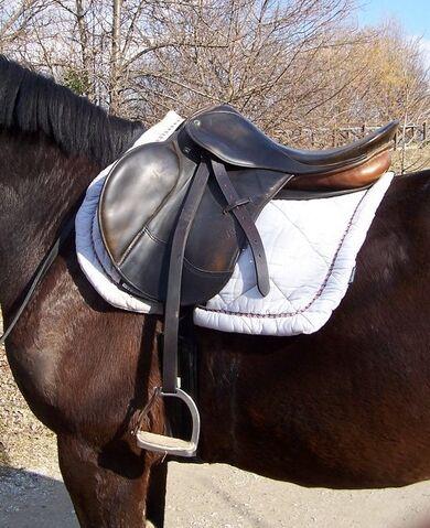 File:English saddle.jpg