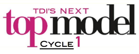 File:TDINextTopModelCycle1.png