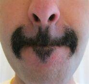 EvilMustache