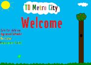 Td metro volunteer work week 3