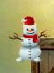 Snowman Guy.