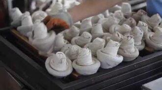 Pu erh Tea Documentary Tibetan Mushroom (Jin Cha) Pu Erh Tea Processing
