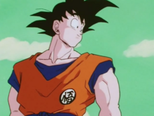 Goku after beating Burter