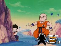 Krillin Owned Count 14