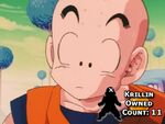 Krillin Owned Count 11