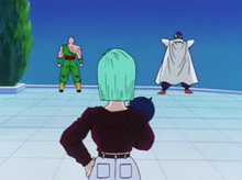 Tien, Bulma and Piccolo on the lookout