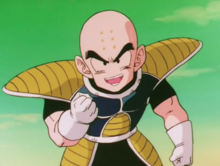 Krillin doesn't want to tell Vegeta
