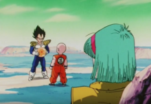 Vegeta after getting the last Dragon Ball