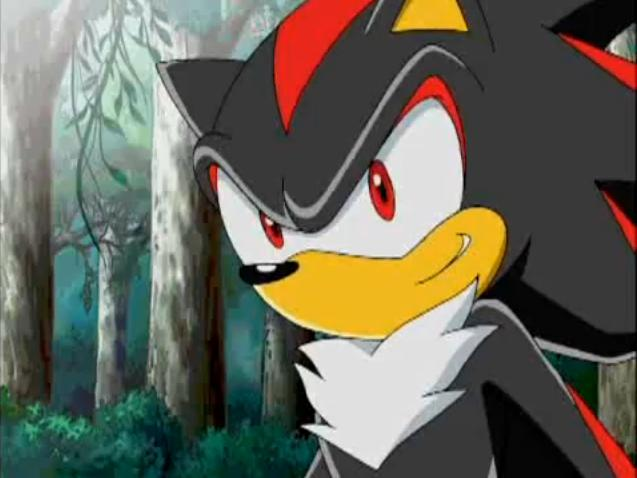 File:Shadow the Hedgehog (129).jpg