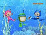 The Aquarium Fix-It