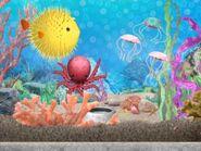 Pufferfishoctopusjellys01e02