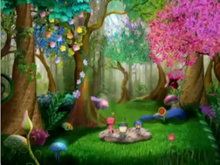 The sunshine forest