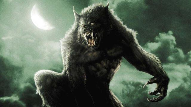 File:Van Helsing Werewolf.jpg