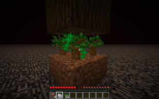 Growing Trees on the Roof of the Nether