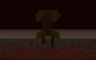 Dark Oak Tree Growing Through Bedrock
