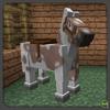 Overo Horse