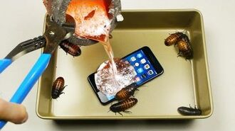Casting Cockroaches + iPhone 7 Plus in Molten Aluminum!   TechRax