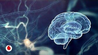 La inteligencia artificial nos ayudará a dibujar el mapa del cerebro-0