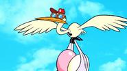 Hose-Water-Stork6